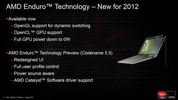 AMD Enduro 2012 update