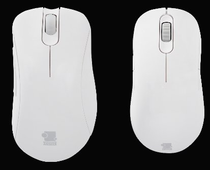 Zowie white gaming mice