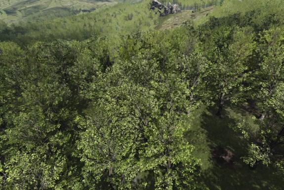 Unreal Engine tree foliage