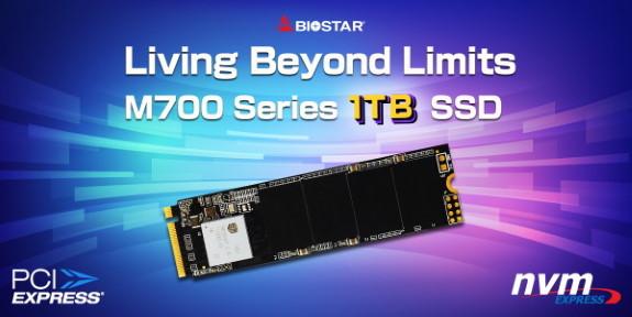 Biostar M700 1TB M.2 PCIe NVMe SSD