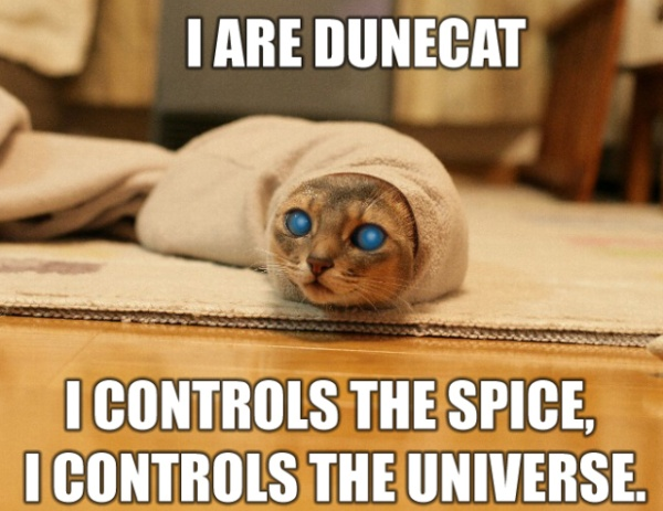 I Are Dune Cat - I Controls Teh Spice, I Controls Teh Universe
