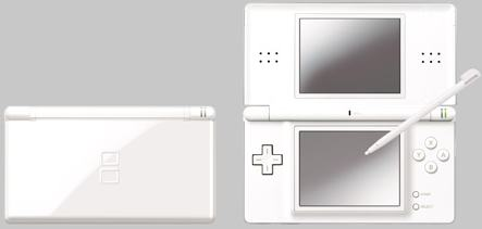The DS Lite