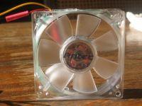 Back of the fan