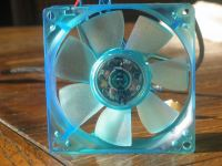 Back of the fan