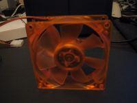 Orange fan back