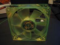 Green fan back