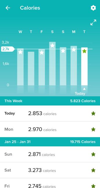 Fitbit app calories screen