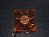 The back of the fan